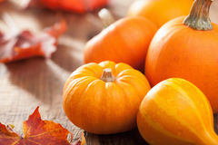 Decorative pumpkins and autumn leaves for halloween Royalty Free Stock Photo
