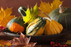 Decorative pumpkins and autumn leaves for halloween Stock Photography