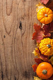 Decorative pumpkins and autumn leaves halloween background Royalty Free Stock Image
