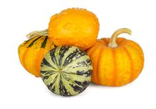 Decorative pumpkins collection isolated on white background. Decorative pumpkins collection isolated on a white background Royalty Free Stock Image