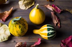Decorative pumpkins and dry autumn leafs Royalty Free Stock Images