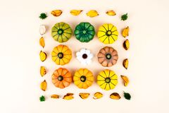 Decorative pumpkins with fall leaves. Royalty Free Stock Images