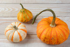 Decorative Pumpkins and Gourds Stock Photo