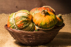Decorative pumpkins. A group of colorful decorative pumpkins on gunny background Royalty Free Stock Photography