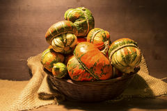 Decorative pumpkins. A group of colorful decorative pumpkins on gunny background Royalty Free Stock Photo