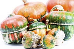 Decorative pumpkins. A group of colorful decorative pumpkins on white background Stock Photography