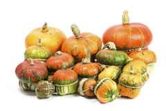 Decorative pumpkins. A group of colorful decorative pumpkins on white background Royalty Free Stock Photo