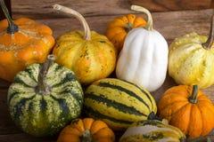 Decorative pumpkins Royalty Free Stock Photos