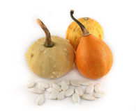 Decorative pumpkins isolated Stock Photography
