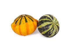 Decorative pumpkins isolated on a white background. Decorative pumpkins isolated on white background Royalty Free Stock Image