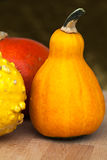 Decorative pumpkins. Stock Photos