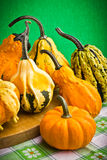 Decorative pumpkins squash fruits Royalty Free Stock Images