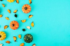 Decorative pumpkins with fall leaves frame. Stock Photo