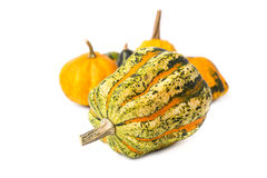 Decorative pumpkins Royalty Free Stock Photos