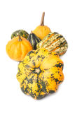 Decorative pumpkins Stock Photo