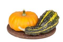 Decorative pumpkins  on white. Background Stock Image