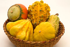 Decorative pumpkins in wicker basket Royalty Free Stock Image