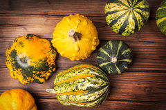 Decorative pumpkins Stock Photography