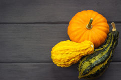 Decorative pumpkins on wooden. Background Royalty Free Stock Image