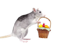 Decorative rat taking  basket of artificial fruits Royalty Free Stock Photography