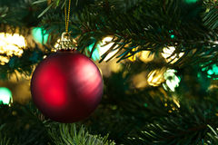 Decorative red bauble in a Christmas tree stock images