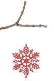 Decorative red christmas snowflake on a branch. Stock Image