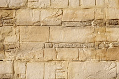 Decorative relief brown and ecru plaster Stock Images