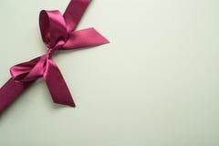 Decorative ribbon and bow Stock Photography