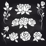 Decorative roses on chalkboard vector illustration