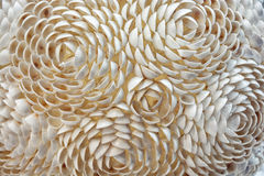 Decorative roses of little sea shells, abstract scene Stock Photos