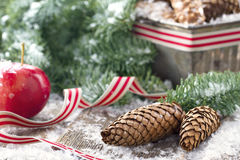 Decorative rustic Christmas setting. Brown pine cones and green spruce tree branches with snow in a decorative rustic Christmas setting on vintage wooden stock images