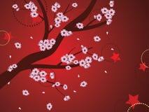 Decorative Sakura Background Royalty Free Stock Photos