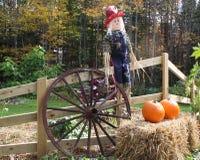 Decorative Scarecrow Stock Images