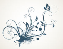 Decorative scroll design Royalty Free Stock Photos