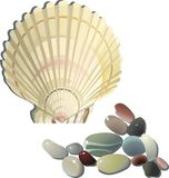 Decorative sea shell and stones. Decorative sea shell and coloured glossy stones Royalty Free Stock Image