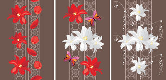 Decorative seamless borders with white and red tulips Stock Photography