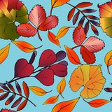 Decorative seamless pattern of leaves and branches. royalty free stock images
