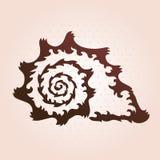 Decorative seashell Royalty Free Stock Image