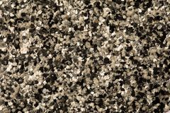 Decorative shell texture, black and white fractions Royalty Free Stock Photography