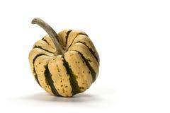 Decorative small pumpkin isolated Royalty Free Stock Photo