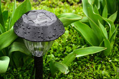 Decorative Small Solar Garden Light. Lanterns In Flower Bed. Garden Design. Solar Powered Lamp Royalty Free Stock Photography