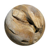 A Decorative Smooth Round Wooden Root Ball. Royalty Free Stock Photography