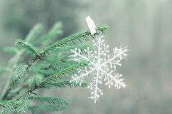 Decorative snowflake on the tree. Winter forest Royalty Free Stock Photo