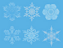 Decorative snowflakes Stock Images