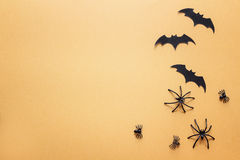 Decorative spiders and bats on orange background with space for Stock Photos