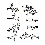 Decorative Spring Branch Tree Silhouette With Grapes Stock Images