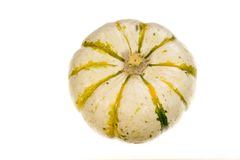 Decorative squash. A small white decorative squash or pumpkin royalty free stock photography