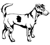 Decorative standing portrait of Dog Jack Russell terrier vector. Decorative portrait of standing in profile dog Jack Russell terrier, vector isolated Stock Photo