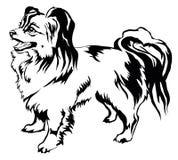 Decorative standing portrait of dog Papillon vector illustration Stock Images
