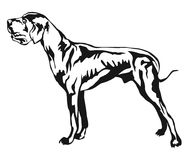 Decorative standing portrait of Great Dane vector illustration. Decorative portrait of standing in profile Great Dane, vector isolated illustration in black Royalty Free Stock Images